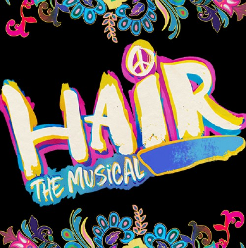 Hair musical logo